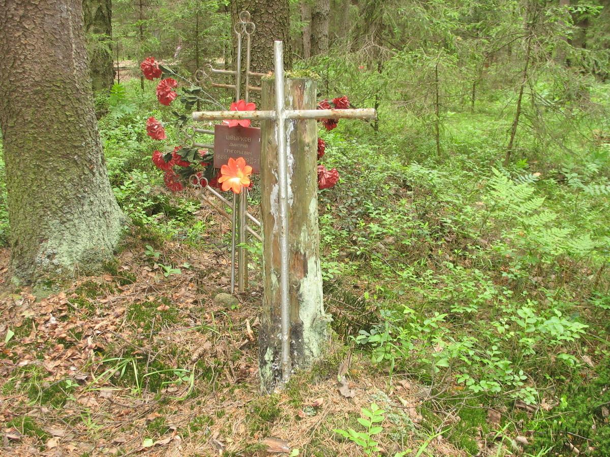 Памятный крест Д. Г. Швыркову. Фото 06.06.2007