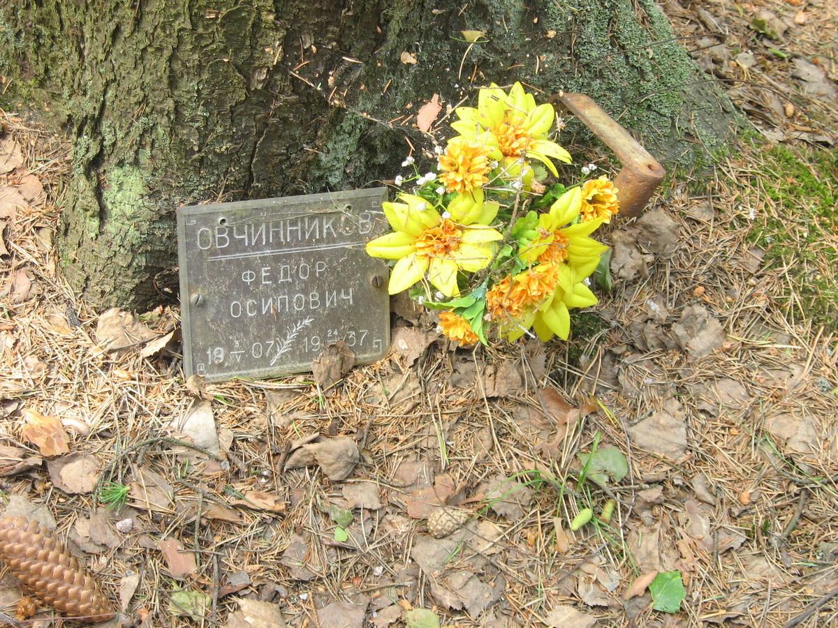 Памятная табличка Ф. О. Овчинникову. Фото 15.06.2007