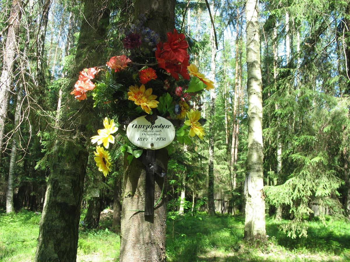 Памятный крест Б. О. Олизаровичу. Фото 16.06.2007