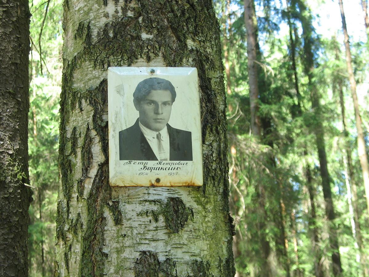Памятная табличка П. П. Вараксину. Фото 16.06.2007