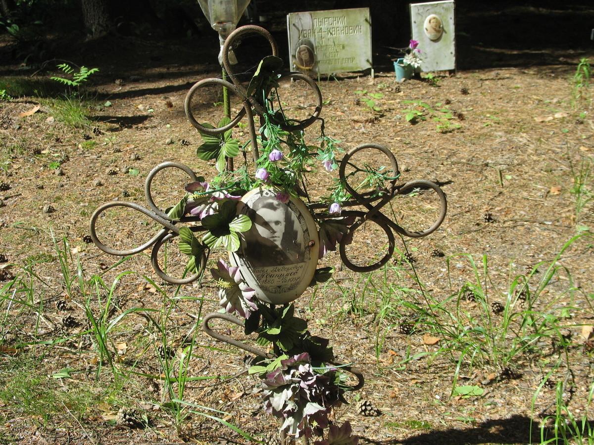 Памятный крест П. Ф. Абакумову. Фото 16.06.2007