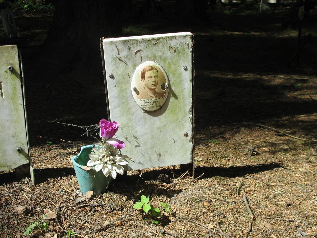Символическое надгробие Э. В. Тальберга. Фото 16.06.2007