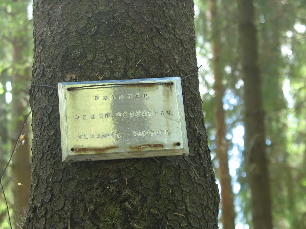 Памятная табличка Ф. Ф. Вализеру. Фото 16.06.2007