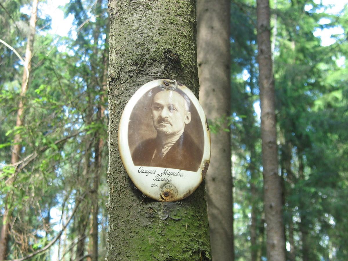 Памятная табличка С. М. Галлаю. Фото 16.06.2007
