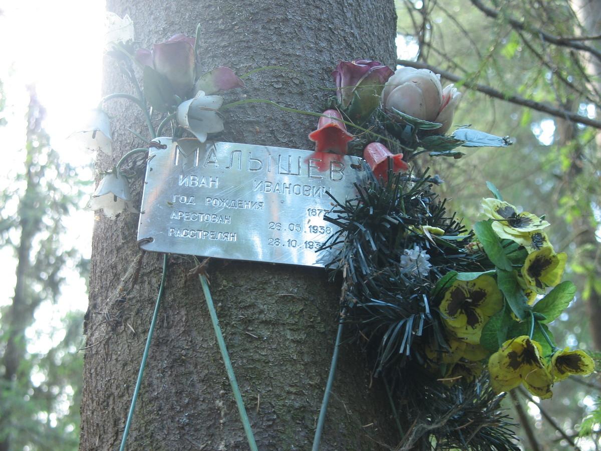 Памятная табличка И. И. Малышеву. Фото 16.06.2007
