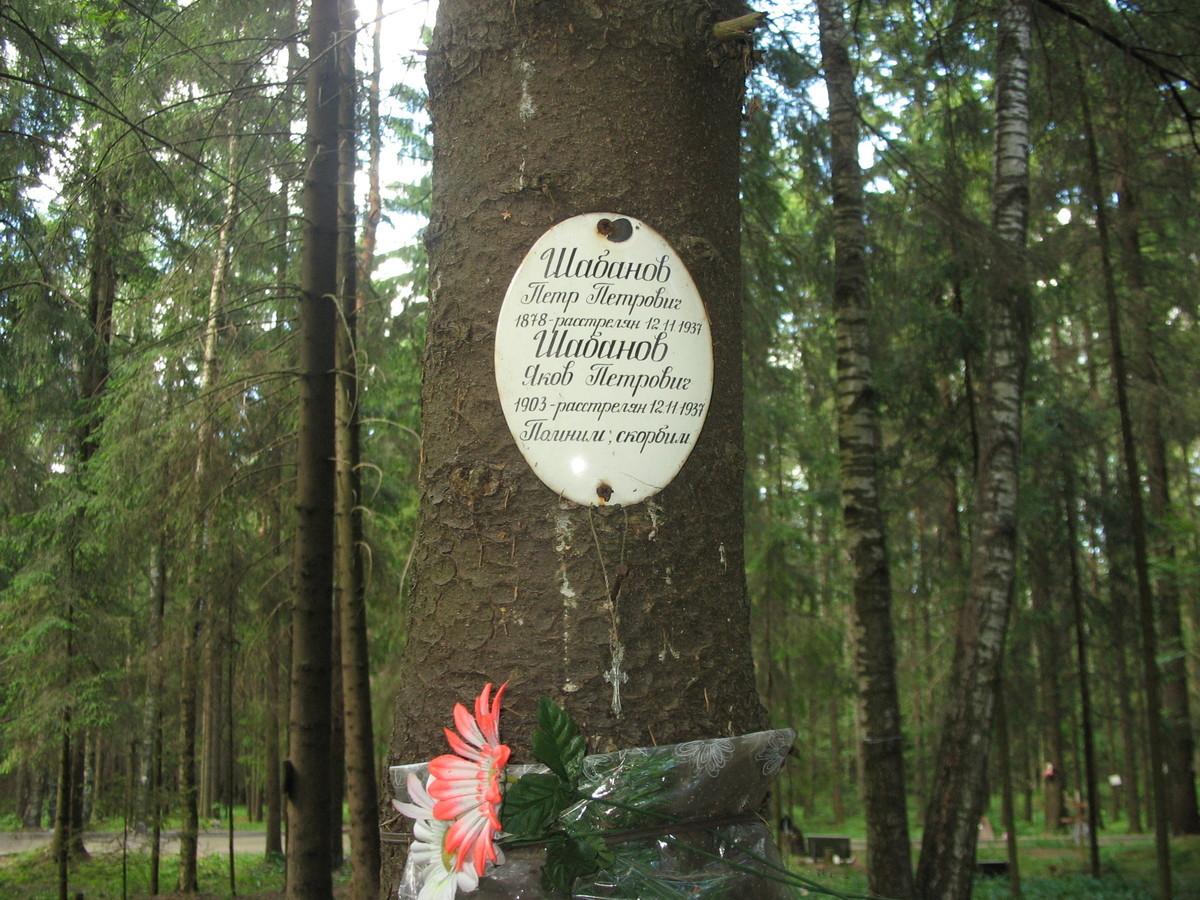 Памятная табличка П. П. и Я. П. Шабановым. Фото 16.06.2007