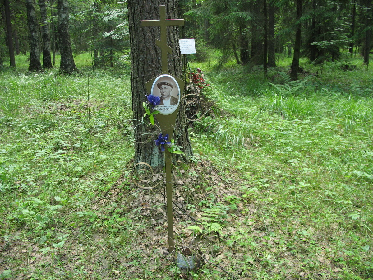 Памятный крест К. С. Калакуцкому. Фото 16.06.2007