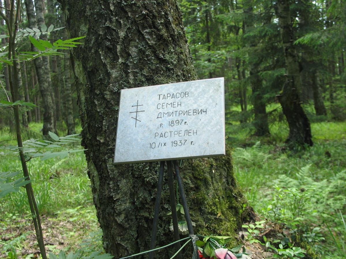 Памятная табличка С. Д. Тарасову. Фото 16.06.2007
