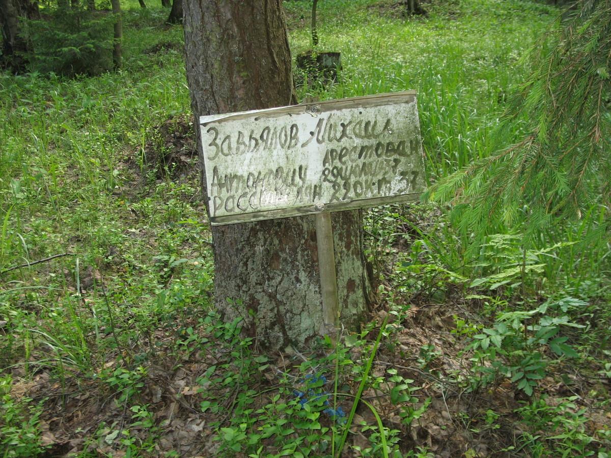 Памятная табличка М. А. Завьялову. Фото 16.06.2007