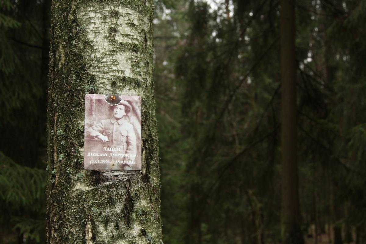 Памятная табличка В. Д. Лапину. Фото 12.11.2013