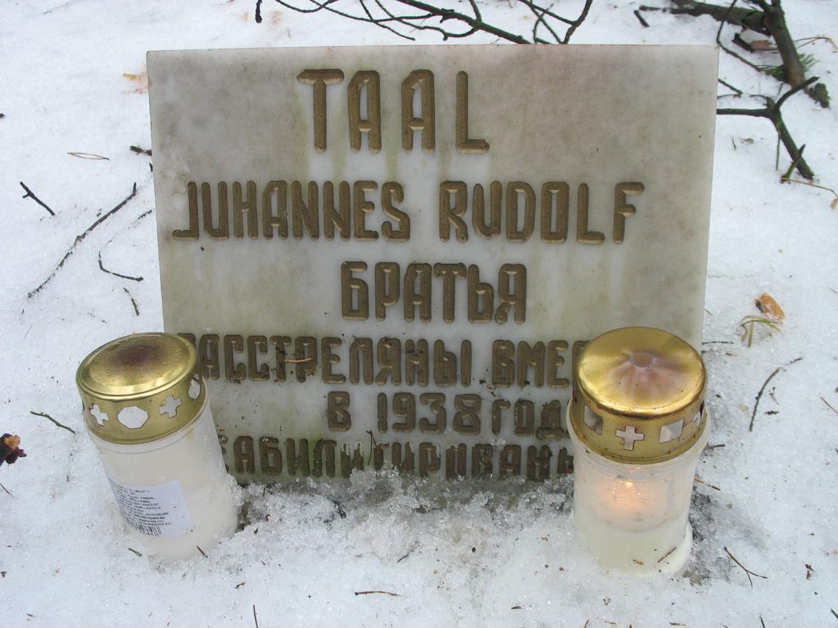 Символическое надгробие И. М. и Р. М. Тааль. Фото 10.02.2008