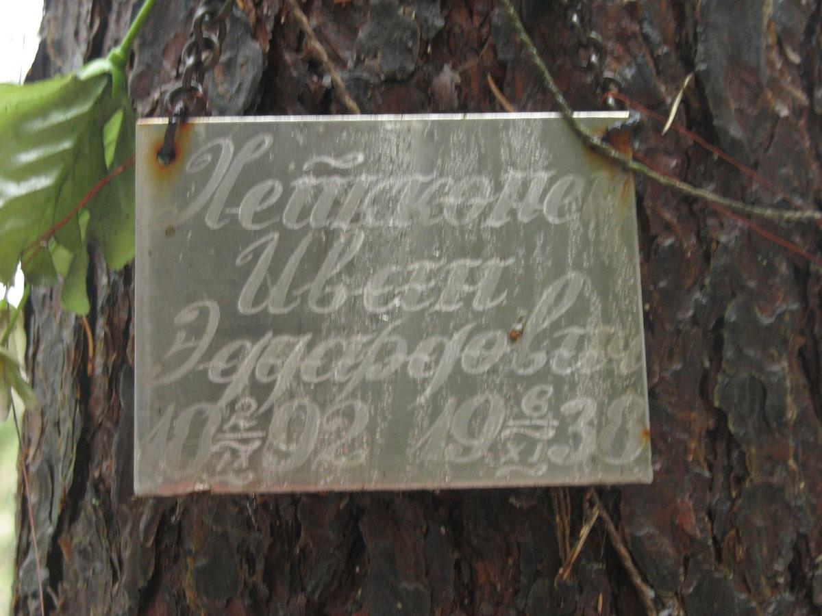 Памятная табличка И. Э. Хейконену. Фото 10.02.2008