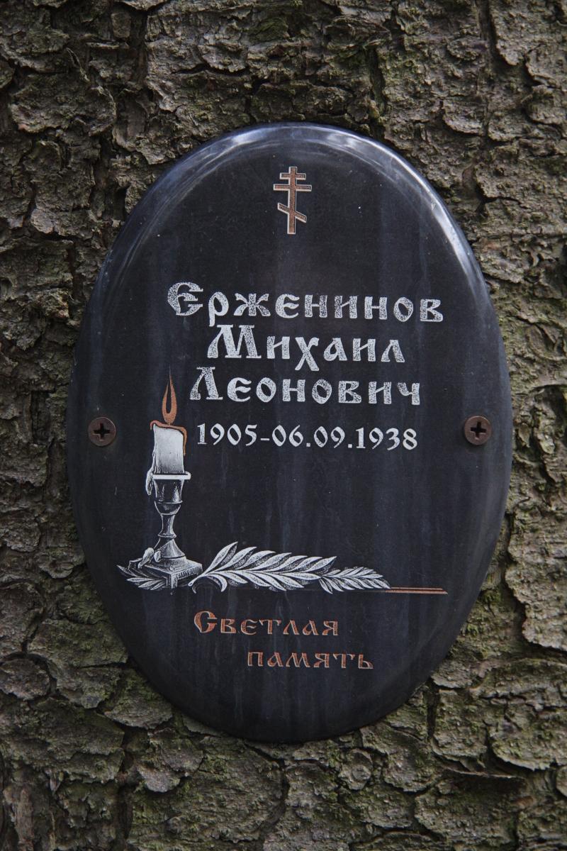 Памятная табличка М. Л. Ерженинову. Фото 18.05.2017