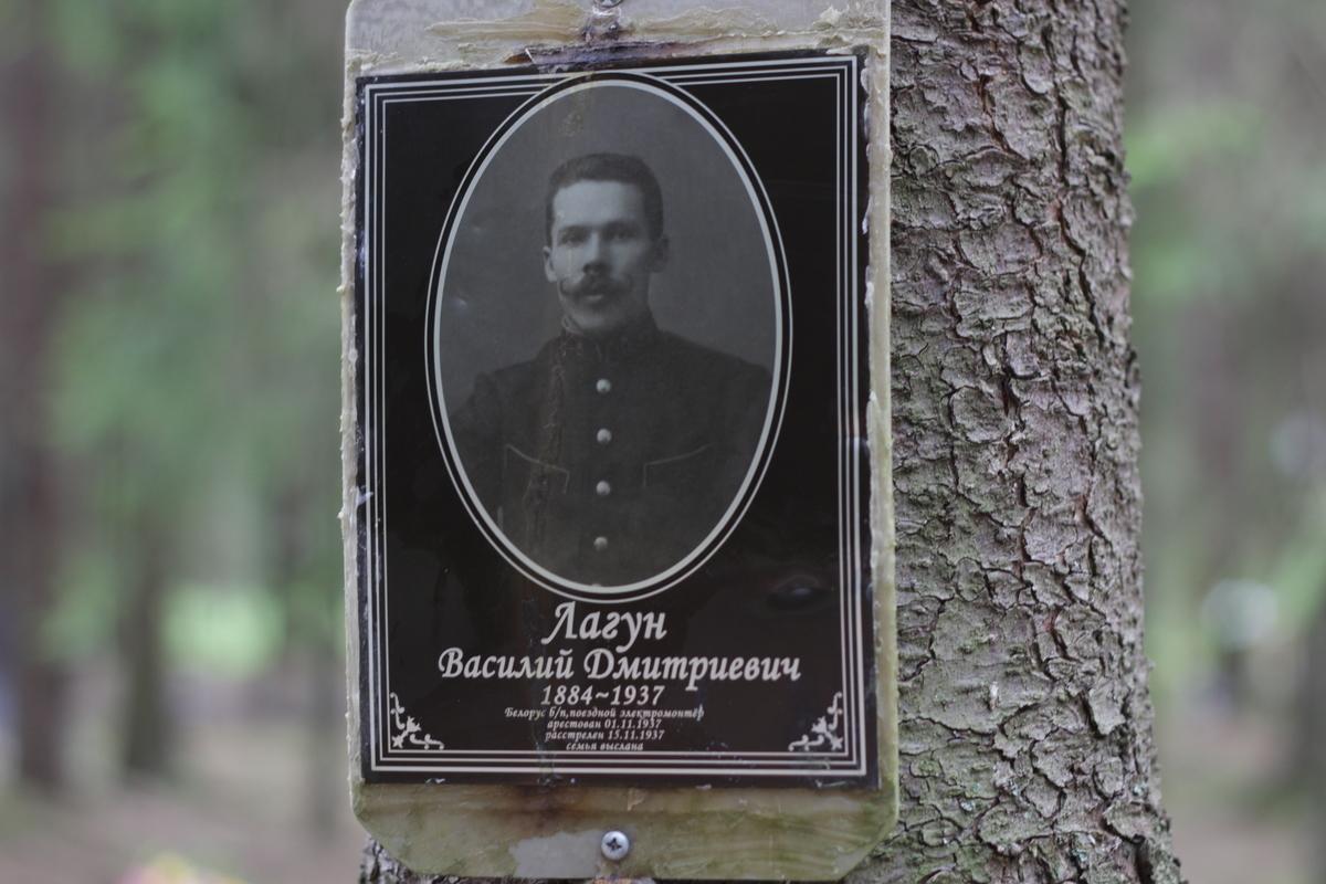 Памятная табличка В. Д. Лагуну. Фото 05.06.2017