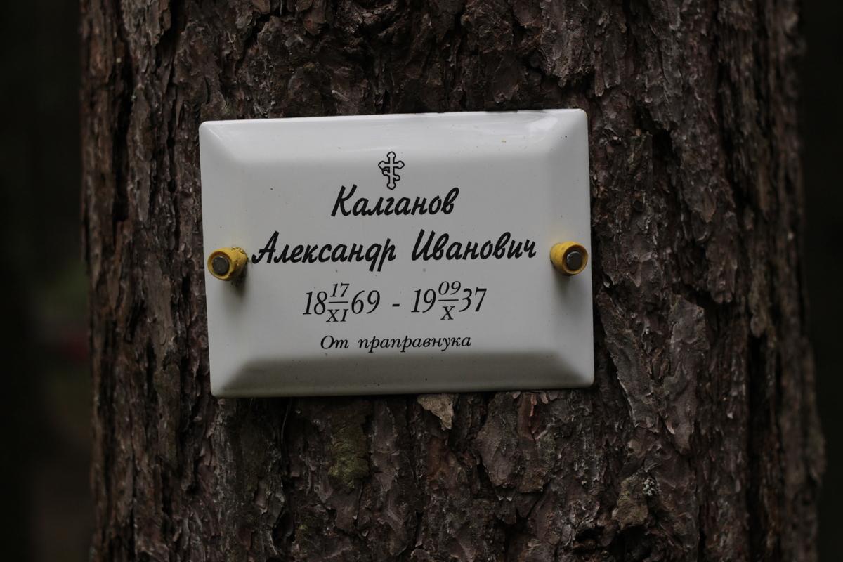 Памятная табличка А. И. Калганову. Фото 05.06.2017