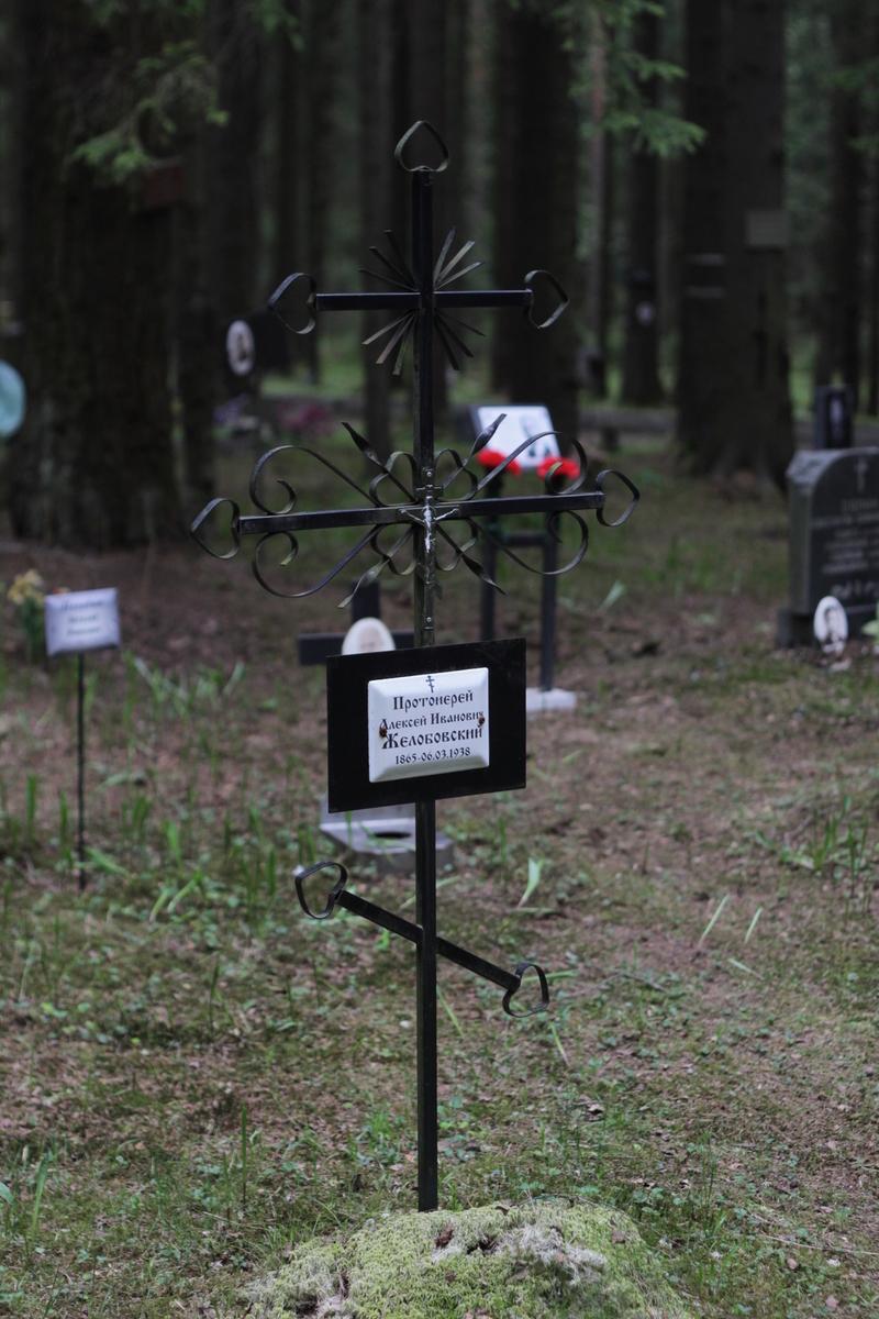 Памятный крест А. И. Желобовскому. Фото 05.06.2017