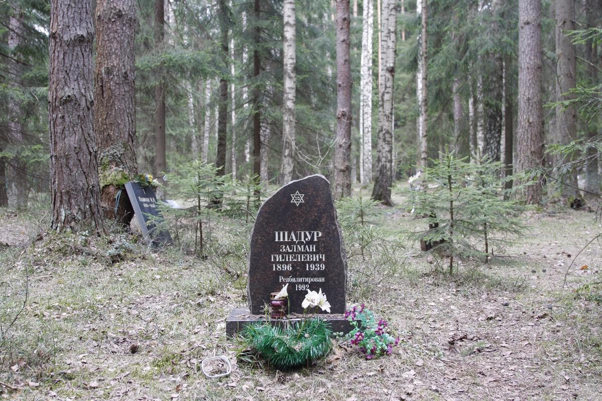 Символическое надгробие З. Г. Шадура. Фото 18.05.2017