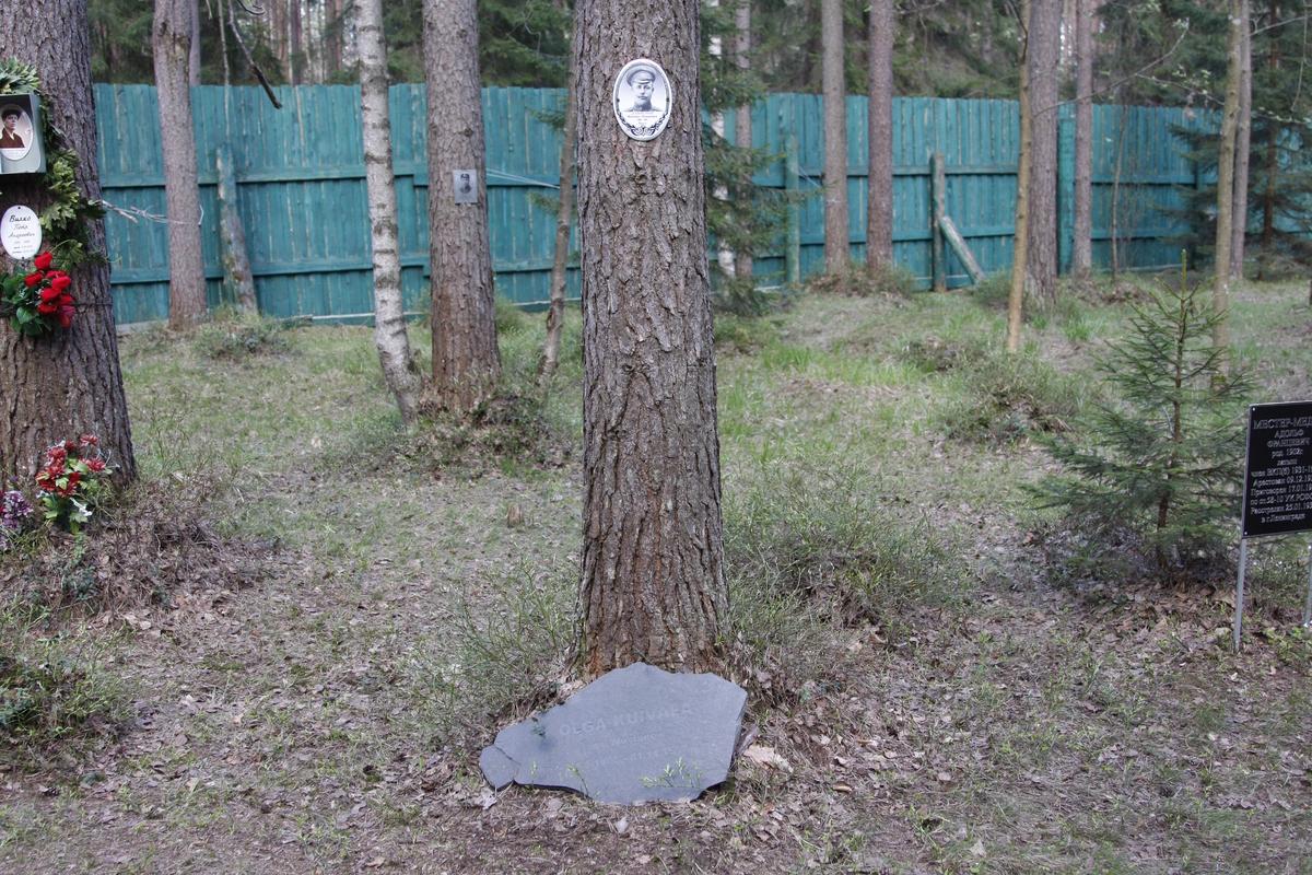 Памятная табличка М. И. Данилову. Фото 18.05.2017