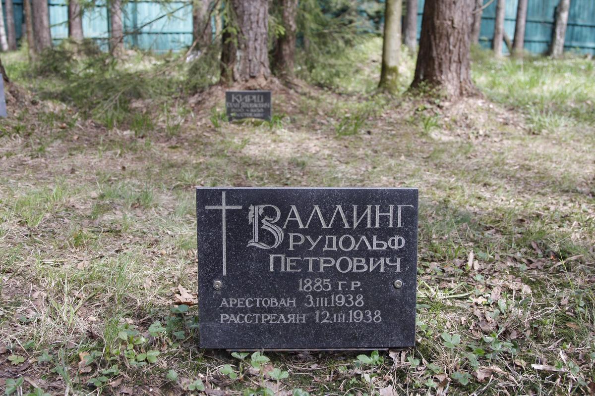 Памятный знак Р. П. Валлингу. Фото 18.05.2017