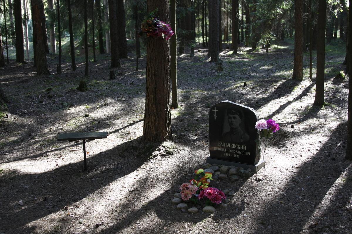 Символическое надгробие В. Р. Бальчевского. Фото 18.05.2017