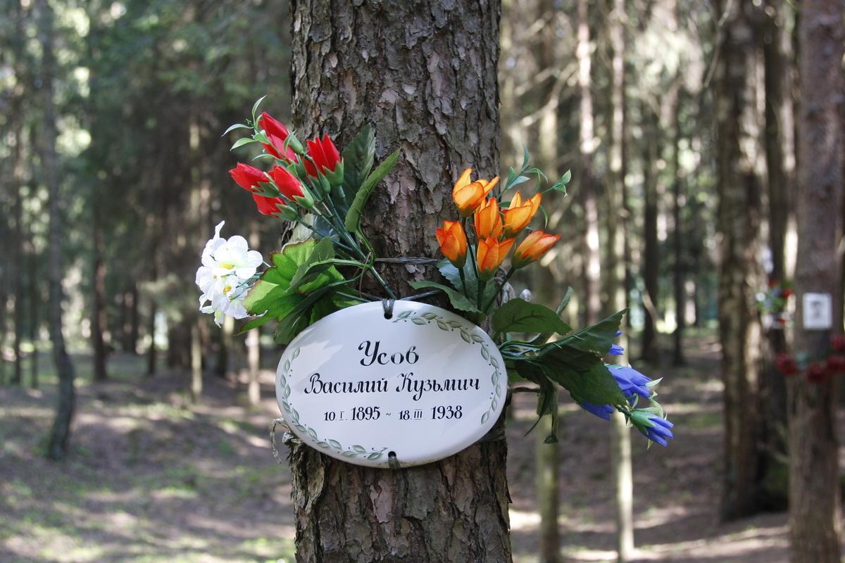 Памятная табличка В. К. Усову. Фото 18.05.2017