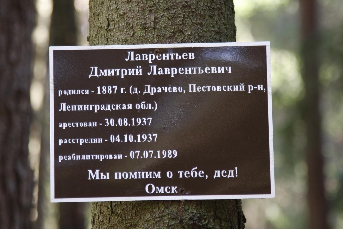 Памятная табличка Д. Л. Лаврентьеву. Фото 18.05.2017