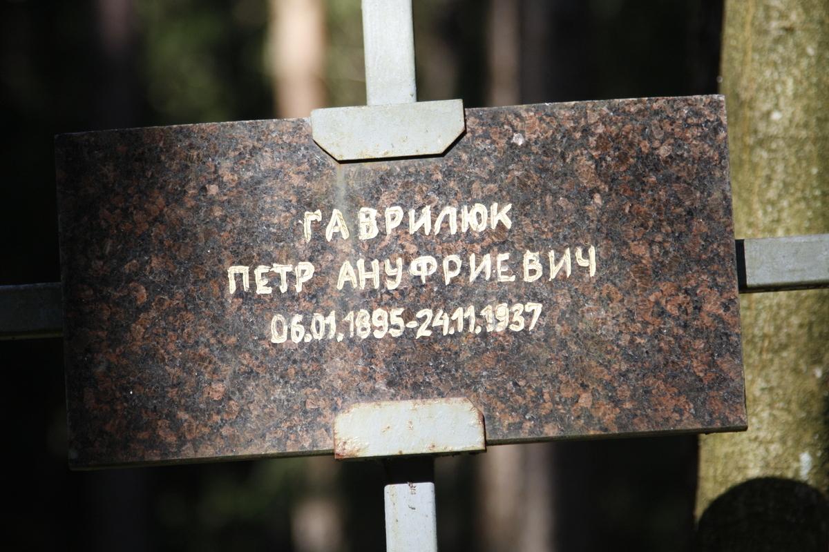 Памятный крест П. А. Гаврилюку. Фото 18.05.2017
