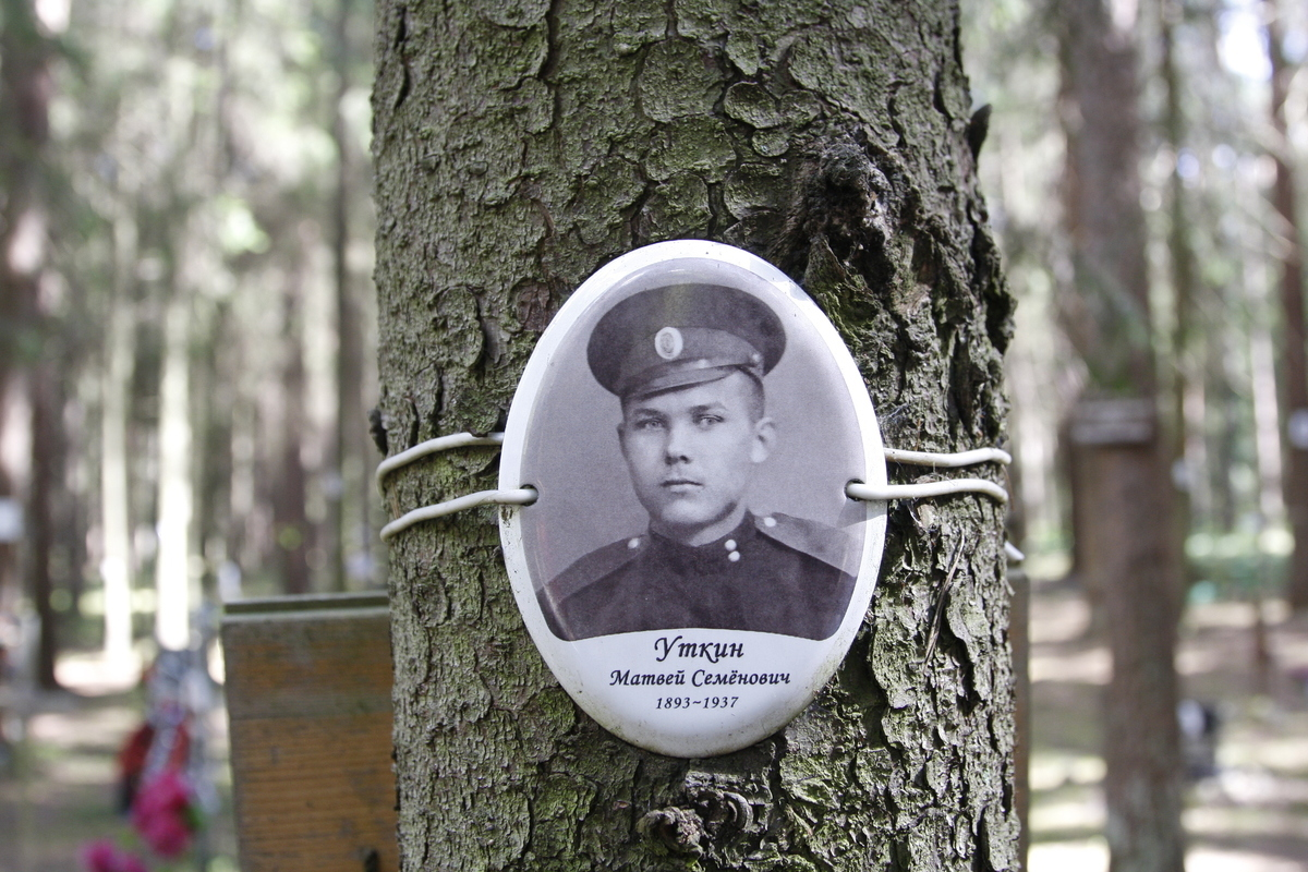Памятная табличка М. С. Уткину. Фото 18.05.2017