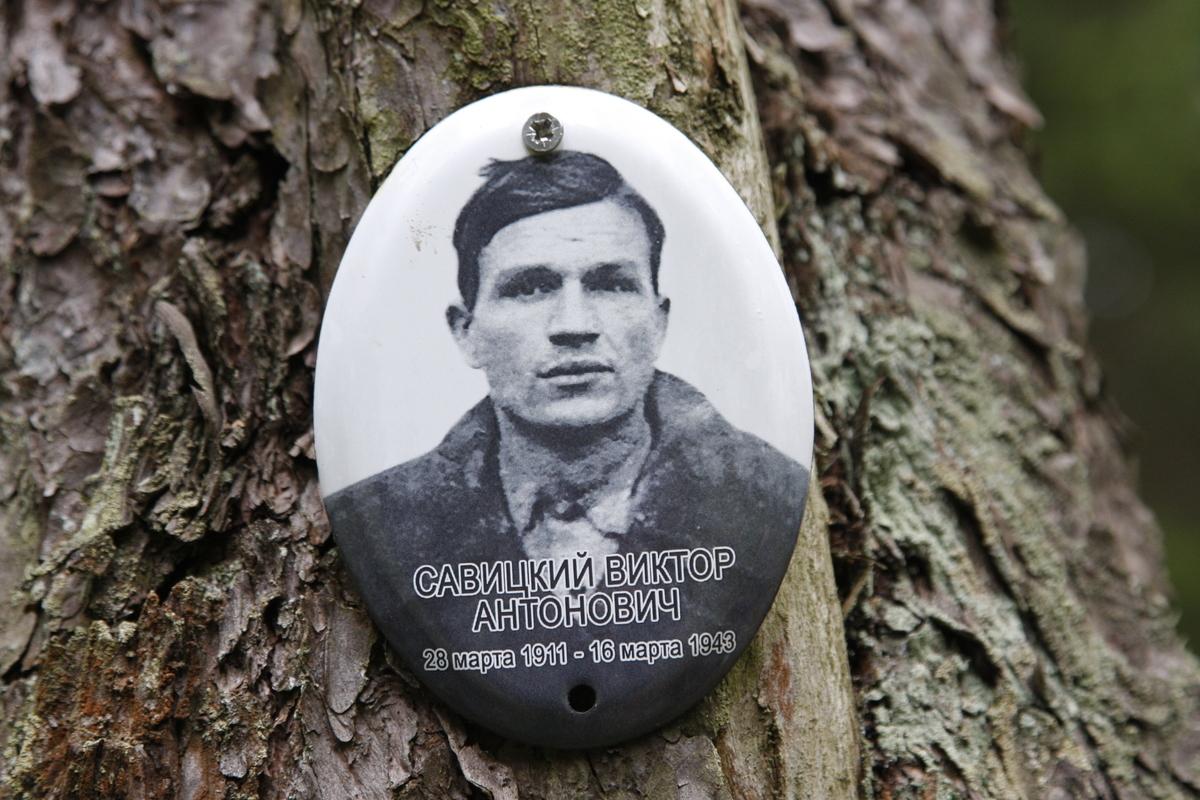 Памятная табличка В .А. Савицкому. Фото 05.06.2017