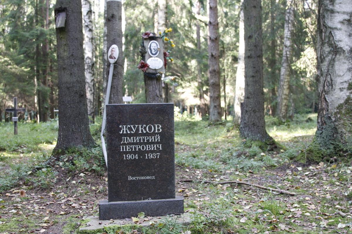Символическое надгробие Д. П. Жукову. Фото 29.08.2017