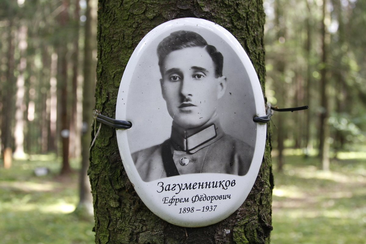 Памятная табличка Е. Ф. Загуменникову. Фото 29.08.2017
