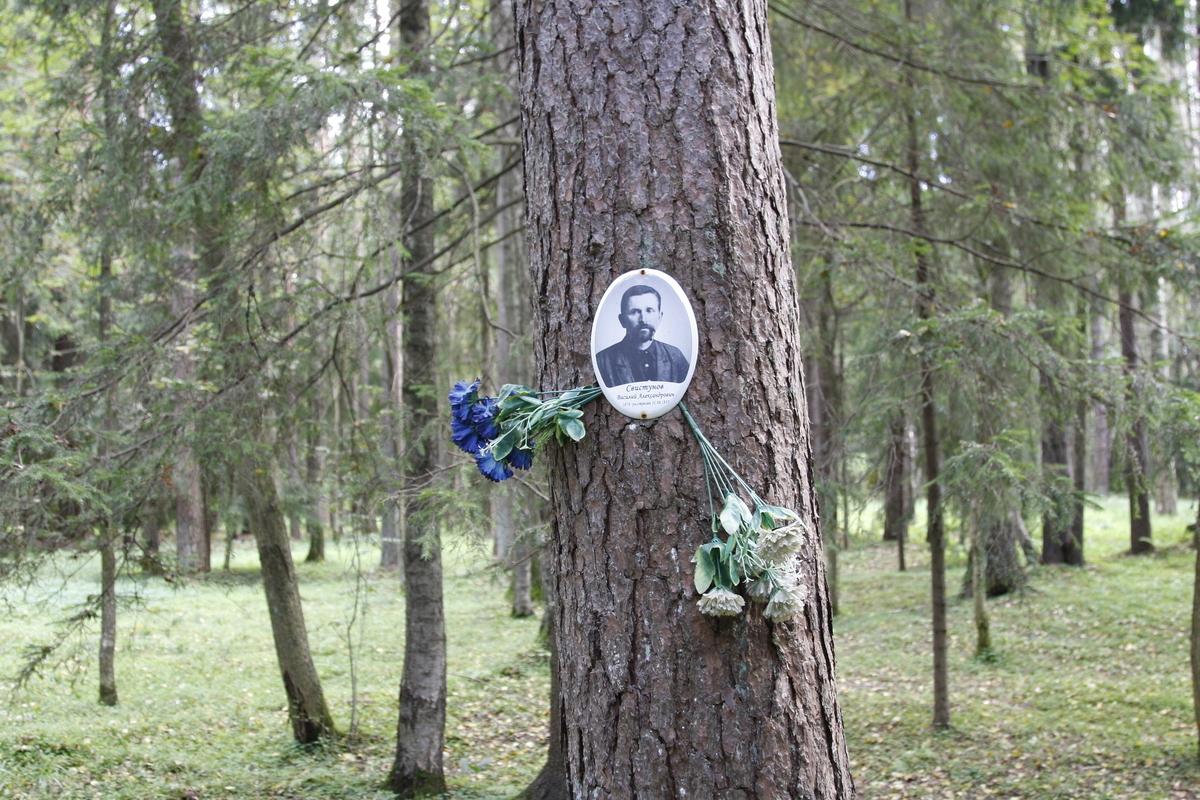 Памятная табличка В. А. Свистунову. Фото 29.08.2017