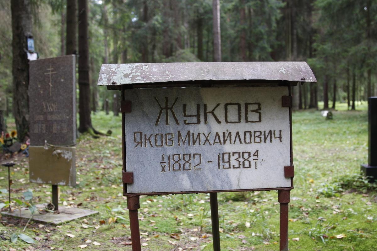 Памятный знак Я. М. Жукову. Фото 02.06.2017